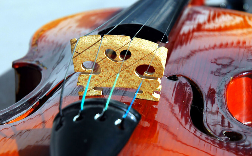 Nailsea Concert Orchestra is online!